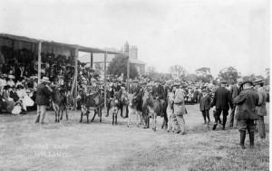 Donkey race Willand