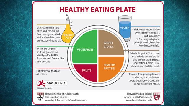 Food Pyramid Healthy Plate