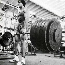 Strength Ratios for Squats and Deadlifts - Excelsior