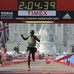 marathon training tips