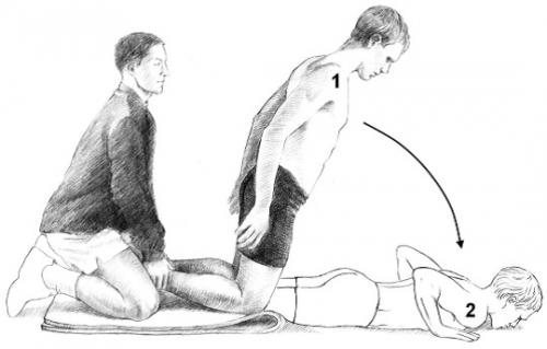 nordic hamstring exercise